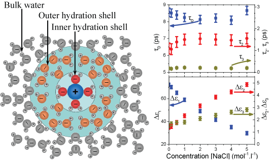 Hydration-shell-IONS